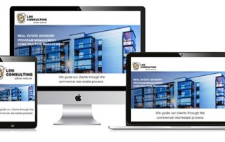 LDG Consulting re-launches website
